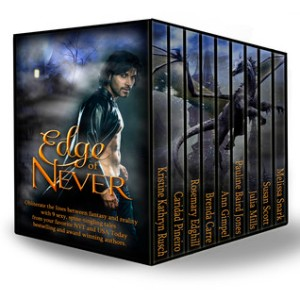 edge of never anthology box set